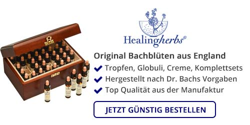 Bachblüten online bestellen